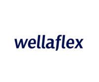 Средства для укладки волос WELLAFLEX